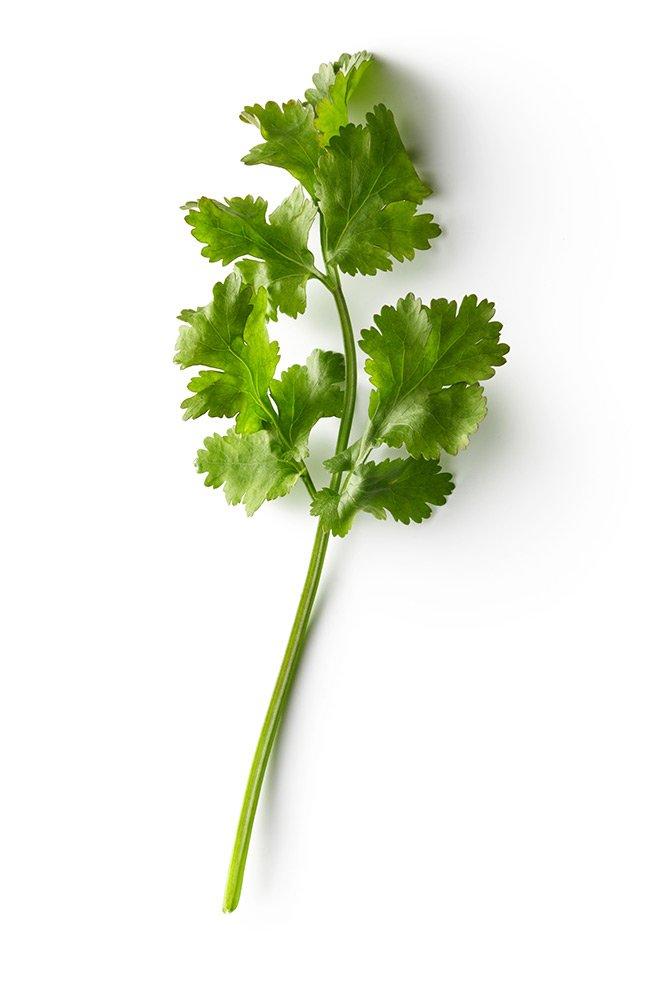 psp-herbs