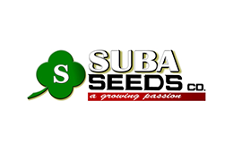 suba-seeds